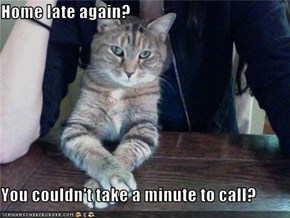 Home late again?  You couldn't take a minute to call?