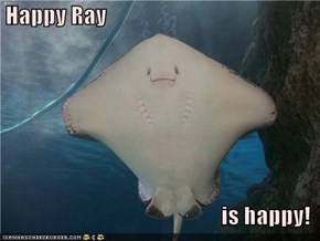 Happy Ray  is happy!