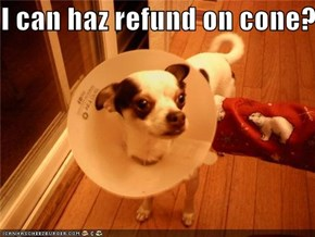 I can haz refund on cone?