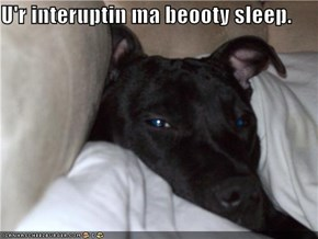 U'r interuptin ma beooty sleep.