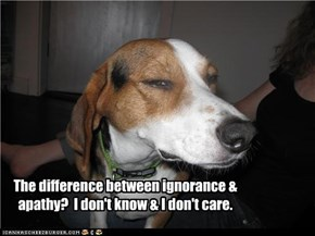 The difference between ignorance & apathy?  I don't know & I don't care.
