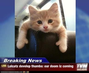 Breaking News - Lolcatz develep thumbs: our doom iz coming