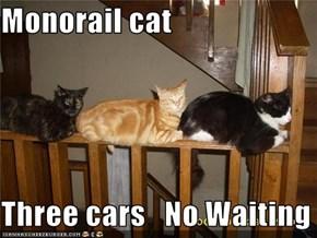 Monorail cat  Three cars   No Waiting