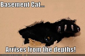Basement Cat...  Arrises from the depths!