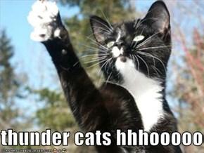thunder cats hhhooooooo