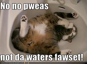 No no pweas   not da waters fawset!