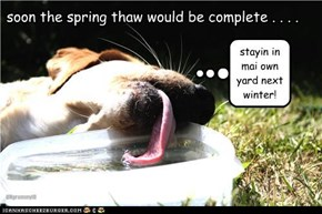 soon the spring thaw would be complete . . . .