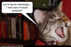 you bring me cheezbuger... i take care of mouse problem!!!