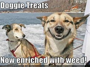 Doggie Treats  Now enriched with weed!
