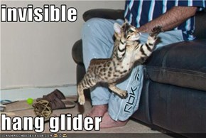 invisible  hang glider