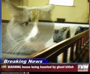 Breaking News - WARNING house being haunted by ghost kitteh