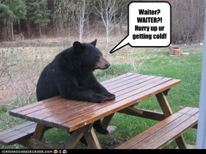 Waiter? WAITER?! Hurry up ur  getting cold!