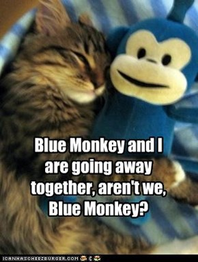 Blue Monkey and I are going away together, aren't we, Blue Monkey?