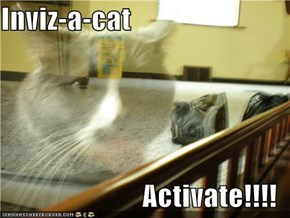 Inviz-a-cat  Activate!!!!