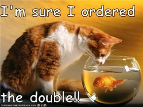 I'm sure I ordered  the double!!