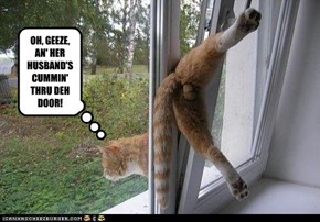 OH, GEEZE, AN' HER HUSBAND'S CUMMIN' THRU DEH DOOR!