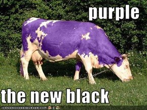 purple  the new black
