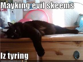 Mayking evil skeems  Iz tyring