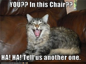 YOU?? In this Chair??  HA! HA! Tell us another one.