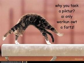 why you taek a piktur? ai only werkun owt  a fartz!