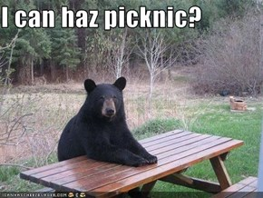 I can haz picknic?