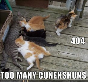 404 TOO MANY CUNEKSHUNS