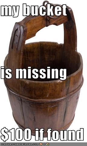 my bucket is missing  $100 if found
