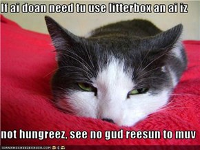 If ai doan need tu use litterbox an ai iz  not hungreez, see no gud reesun to muv
