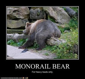 MONORAIL BEAR