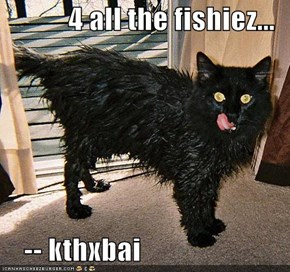 4 all the fishiez...       -- kthxbai