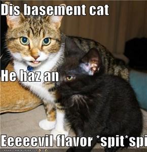 Dis basement cat He haz an Eeeeevil flavor *spit*spit*spit*