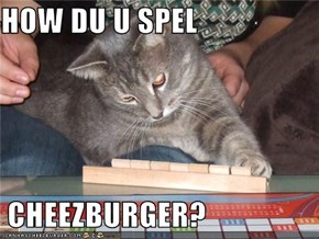HOW DU U SPEL   CHEEZBURGER?
