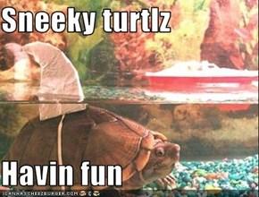 Sneeky turtlz  Havin fun