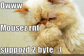 Owww Mousez rnt  suppozd 2 byte :-(