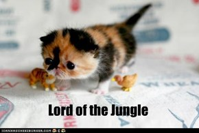 Lord of the Jungle