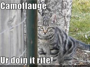 Camoflauge  Ur doin it rite!