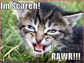 Im scareh!  RAWR!!!