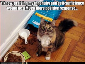 Y'know, praising my ingenuity and self-sufficiency would be a MUCH more positive response...