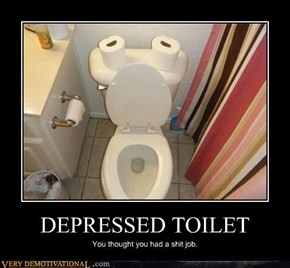 DEPRESSED TOILET