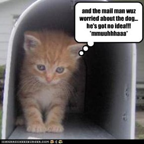 and the mail man wuz worried about the dog... he's got no idea!!! *mmuuhhhaaa*