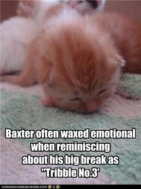 "Baxter often waxed emotional when reminiscing  about his big break as  ""Tribble No.3'"