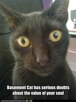 Basement Cat has serious doubts about the value of your soul
