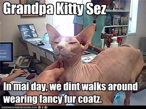Grandpa Kitty Sez   In my day, we didn't walk around wearing  fancy fur coatz.