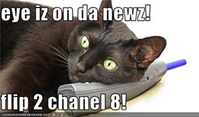 eye iz on da newz!  flip 2 chanel 8!