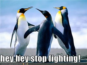 hey hey stop fighting!