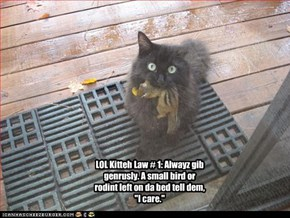 "LOL Kitteh Law # 1: Alwayz gib genrusly. A small bird or rodint left on da bed tell dem, ""I care."""