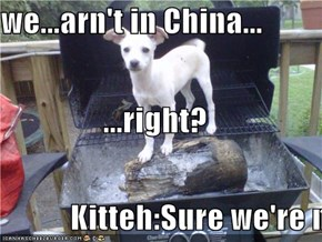 we...arn't in China... ...right? Kitteh:Sure we're not...