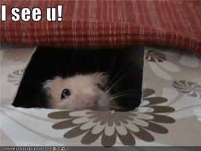 I see u!