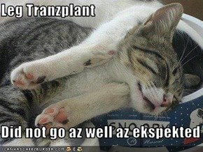 Leg Tranzplant  Did not go az well az ekspekted