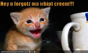 Hey u forgotz ma whipt creem!!!